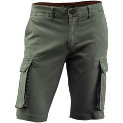 Vêtements Homme Shorts / Bermudas Lumberjack CM80747 002 602 Vert