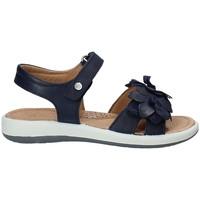 Chaussures Enfant Sandales et Nu-pieds Naturino 0502549-02-0C02 Bleu