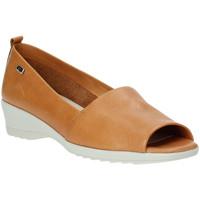Chaussures Femme Ballerines / babies Valleverde 41141 Marron