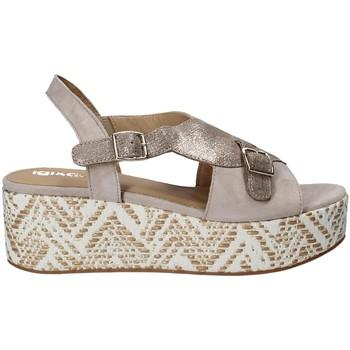 Chaussures Femme Sandales et Nu-pieds IgI&CO 1188 Gris