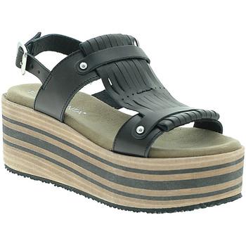Chaussures Femme Sandales et Nu-pieds Pregunta IBH5804 Noir