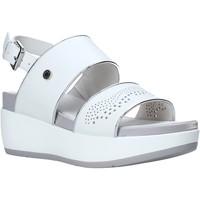 Chaussures Femme Sandales et Nu-pieds Lumberjack SW27006 010 B56 Blanc