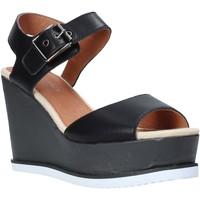 Chaussures Femme Sandales et Nu-pieds Lumberjack SW83106 001 B01 Noir