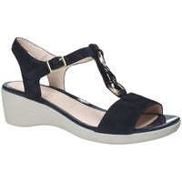 Chaussures Femme Sandales et Nu-pieds Stonefly 110216 Bleu