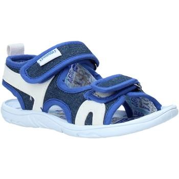Chaussures Enfant Sandales et Nu-pieds Primigi 5449322 Bleu