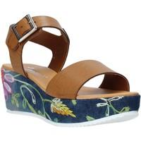 Chaussures Femme Sandales et Nu-pieds Grace Shoes 02 Marron