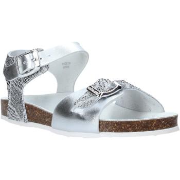 Chaussures Enfant Sandales et Nu-pieds Grunland SB1500 Argent