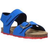 Chaussures Enfant Sandales et Nu-pieds Grunland SB0372 Bleu