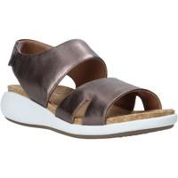 Chaussures Femme Sandales et Nu-pieds Clarks 26140357 Marron