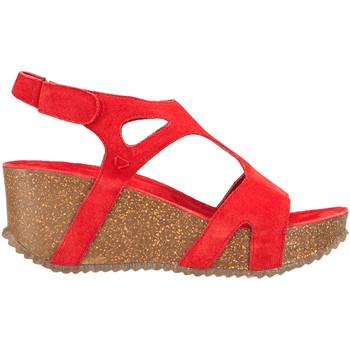 Chaussures Femme Sandales et Nu-pieds Docksteps DSE106246 Rouge