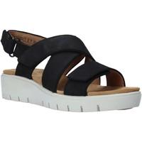 Chaussures Femme Sandales et Nu-pieds Clarks 26140238 Noir