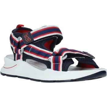 Chaussures Enfant Sandales et Nu-pieds Primigi 5394200 Bleu