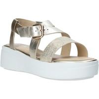 Chaussures Femme Sandales et Nu-pieds Impronte IL01524A Or