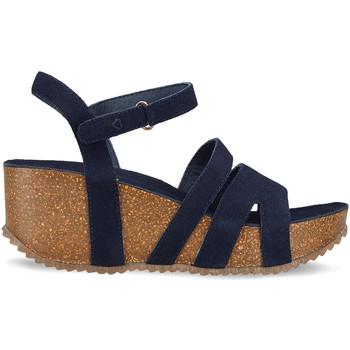Chaussures Femme Sandales et Nu-pieds Docksteps DSE106445 Bleu