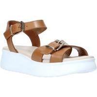 Chaussures Femme Sandales et Nu-pieds Lumberjack SW83306 002 B01 Marron