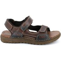 Chaussures Homme Voir toutes les ventes privées Grunland SA2526 Marron