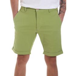 Vêtements Homme Shorts / Bermudas Gaudi 811FU25023 Vert