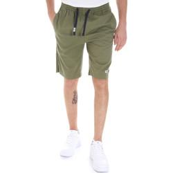 Vêtements Homme Shorts / Bermudas Tommy Jeans DM0DM08714 Vert