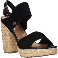 Chaussures Femme Sandales et Nu-pieds Wrangler WL01500A Noir