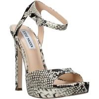 Chaussures Femme Sandales et Nu-pieds Steve Madden SMSLUV-GLDSNK Orange