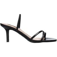 Chaussures Femme Sandales et Nu-pieds Steve Madden SMSLOFT-BLKSNK Noir