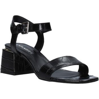 Chaussures Femme Sandales et Nu-pieds Café Noir LF121 Noir