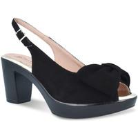 Chaussures Femme Sandales et Nu-pieds Pitillos 2901 Noir