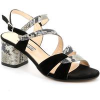 Chaussures Femme Sandales et Nu-pieds Grunland SA2515 Noir