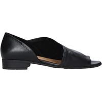 Chaussures Femme Sandales et Nu-pieds Bueno Shoes N5112 Noir