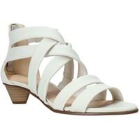 Chaussures Femme Sandales et Nu-pieds Clarks 26132453 Blanc