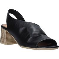 Chaussures Femme Sandales et Nu-pieds Bueno Shoes N1300 Noir