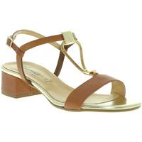 Chaussures Femme Sandales et Nu-pieds Susimoda 2793 Marron