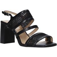 Chaussures Femme Sandales et Nu-pieds Apepazza S0MONDRIAN10/NET Noir