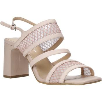 Chaussures Femme Sandales et Nu-pieds Apepazza S0MONDRIAN10/NET Rose