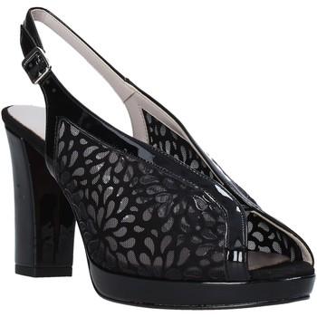 Chaussures Femme Sandales et Nu-pieds Comart 303335 Noir