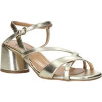 Chaussures Femme Sandales et Nu-pieds Grace Shoes 123010 Autres