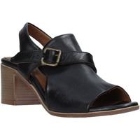 Chaussures Femme Sandales et Nu-pieds Bueno Shoes 9L102 Noir