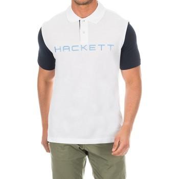 Vêtements Homme Polos manches courtes Hackett Polo de golf Multicolore