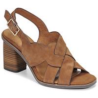 Chaussures Femme Sandales et Nu-pieds Tamaris NOAMY Marron