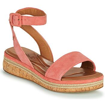 Chaussures Femme Sandales et Nu-pieds Tamaris YARA Rose