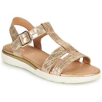 Chaussures Femme Sandales et Nu-pieds Geox D SANDAL HIVER B Doré
