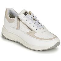 Chaussures Femme Baskets basses Geox D AIRELL A Blanc / Beige