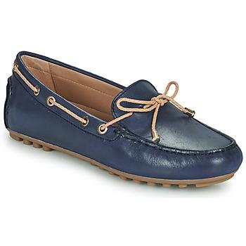 Chaussures Femme Mocassins Geox D LEELYAN C Bleu / Beige