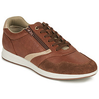 Chaussures Homme Baskets basses Geox U AVERY B Marron