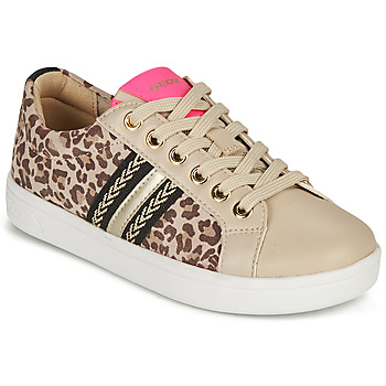 Chaussures Fille Baskets basses Geox DJROCK GIRL Beige / Léopard / Rose