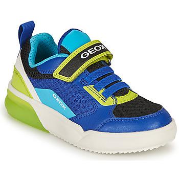 Chaussures Garçon Baskets basses Geox GRAYJAY BOY Bleu / Lime