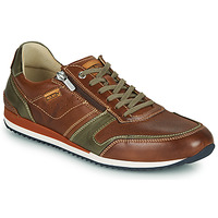 Chaussures Homme Baskets basses Pikolinos LIVERPOOL M2A Marron