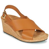 Chaussures Femme Sandales et Nu-pieds Papillio SAMIRA RING BUCKLE Marron