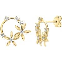 Montres & Bijoux Femme Boucles d'oreilles Sc Crystal B2296-DORE Doré