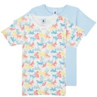 Vêtements Garçon T-shirts manches courtes Petit Bateau MANUR Multicolore